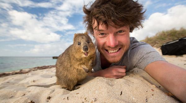 Selfie cùng động vật cũng rất thú vị