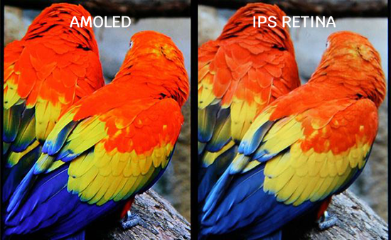 màn hình AMOLED và IPS
