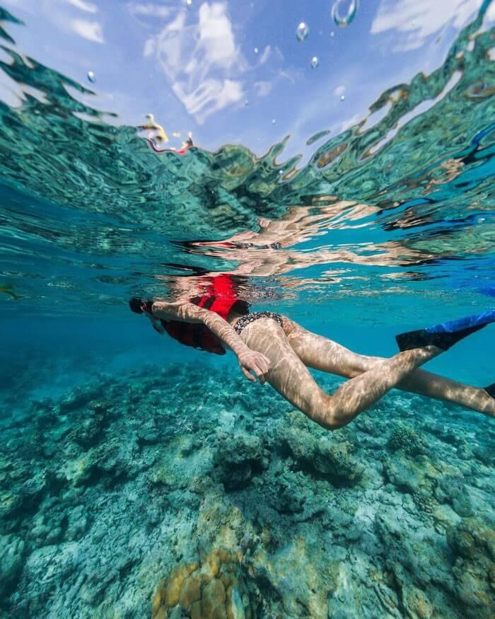 Bức ảnh lặn biển đầy thú vị