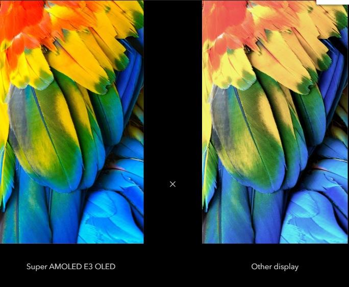 Màu sắc hình ảnh hiển thị trên vivo V17 Pro bên trái so với màn hình thường bên phải